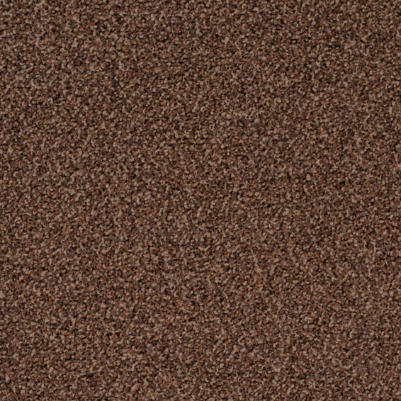 Torso 2053