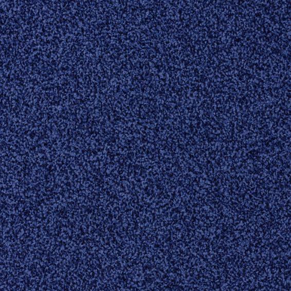 Torso 3011
