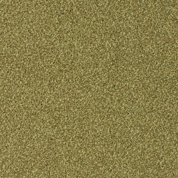 Torso-7082