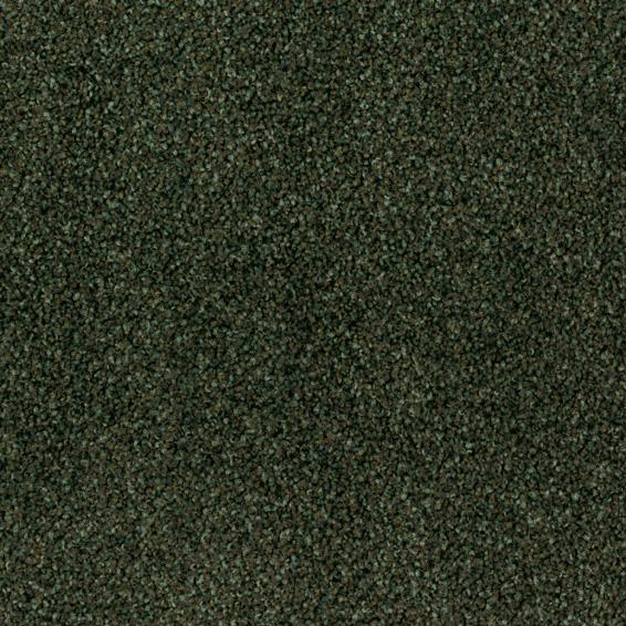 Torso 7811