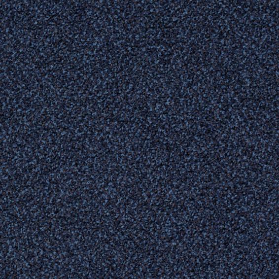 Torso 8521