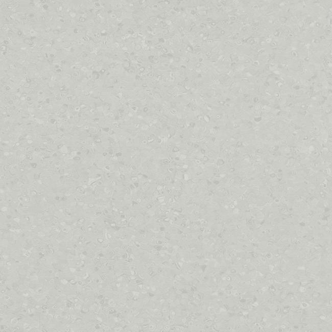 Light Neutral Grey 50003