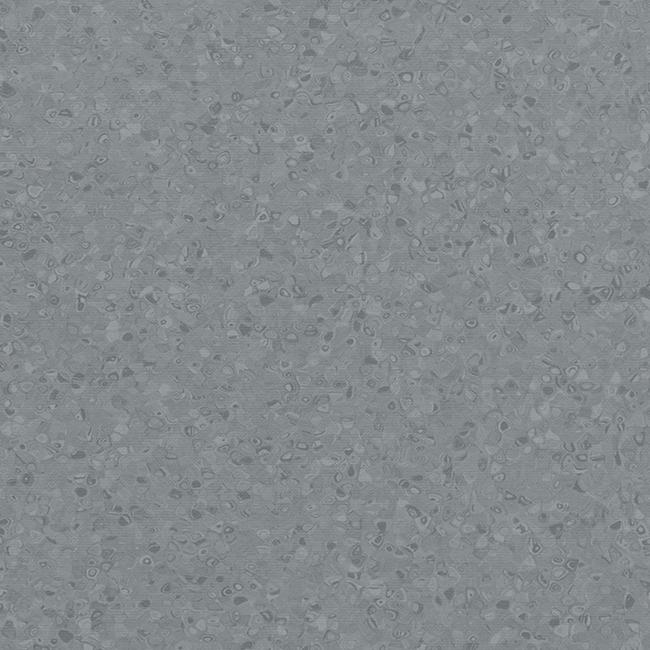 Dark Neutral Grey 50005
