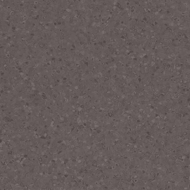 Coal 50031