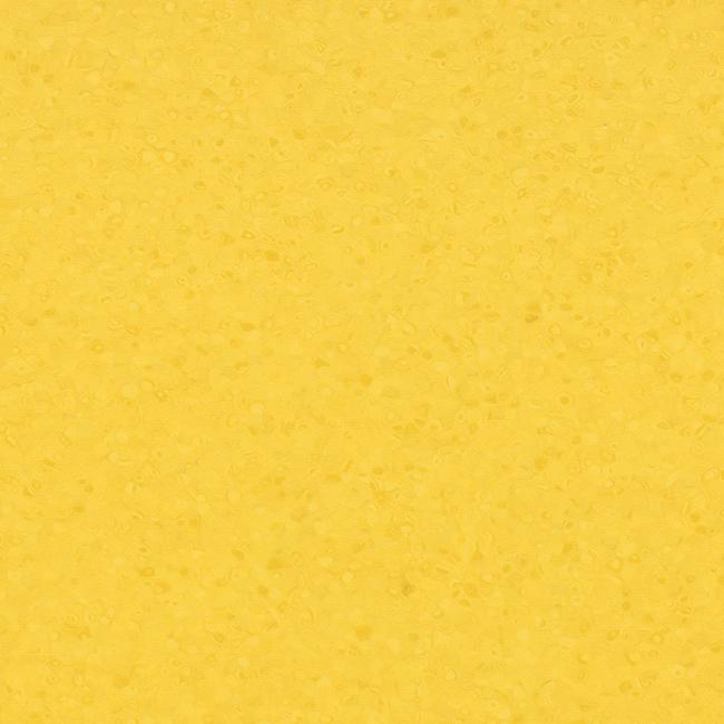 Sun 50053
