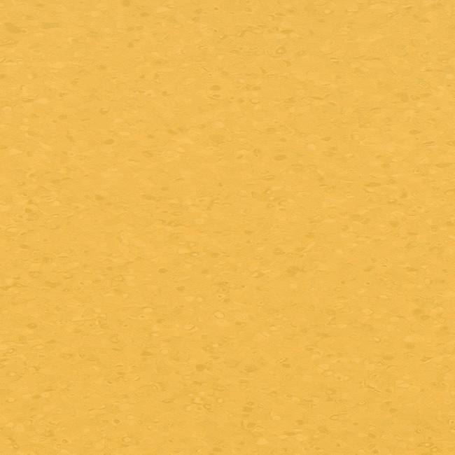 Amber 50054