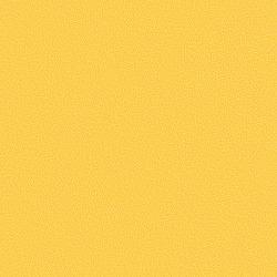 Canary 434505
