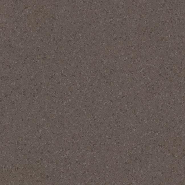 Dark Brown 21020725