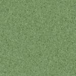 Dark Green 21020011