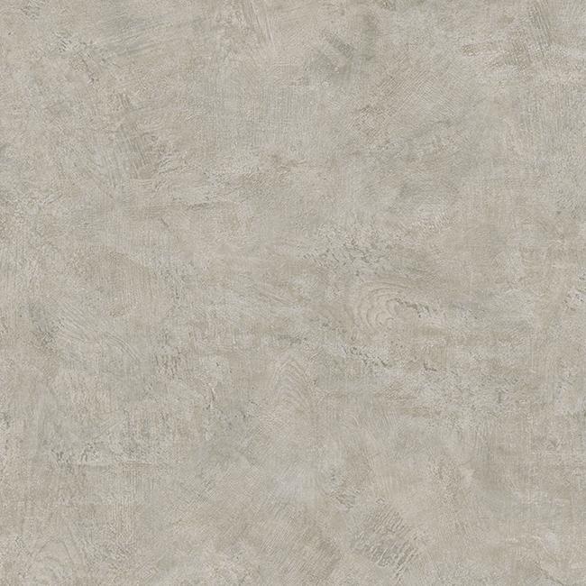 Fossil Grey 25106013