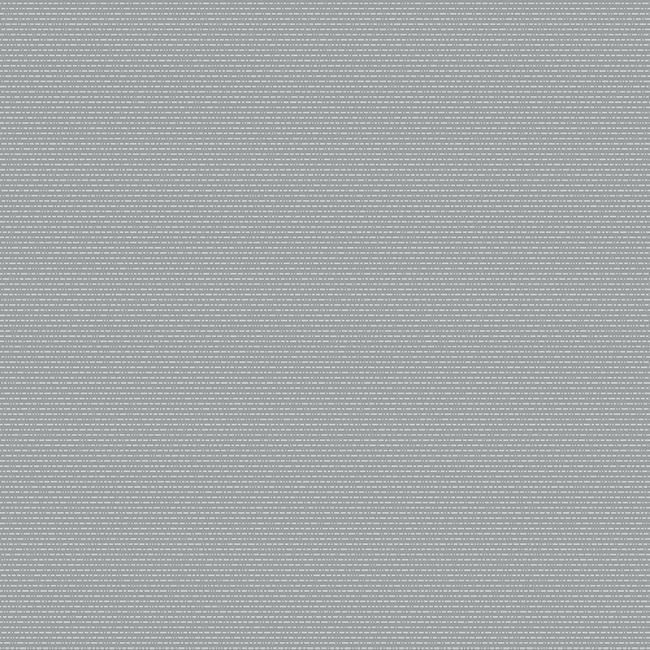 Light Grey 423422