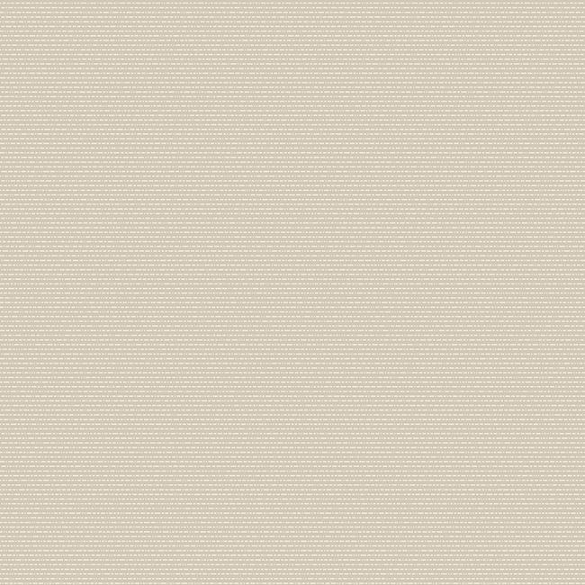 Grey Beige 423431