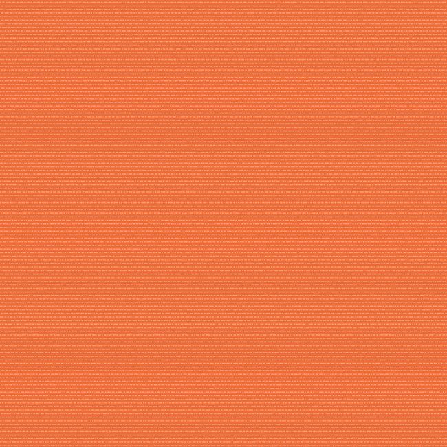Salmon 423436