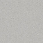 Grey 21020965