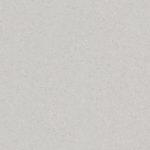 Light Grey 21020701
