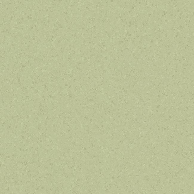 Light Olive Green 21020769