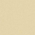 Light Yellow 21020786