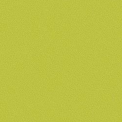 Lime 434528