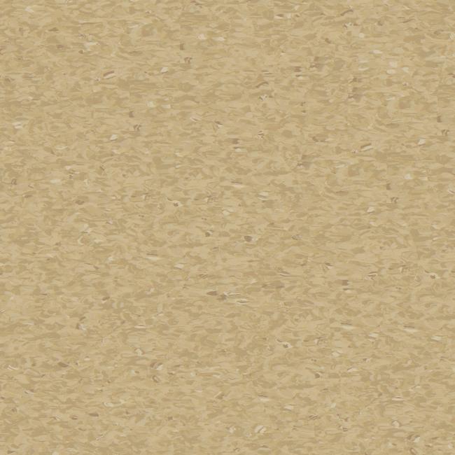 Medium-Camel-3040409