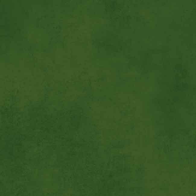 Dark Green 423758