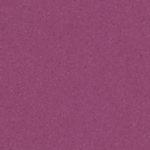 Red Purple 21020776
