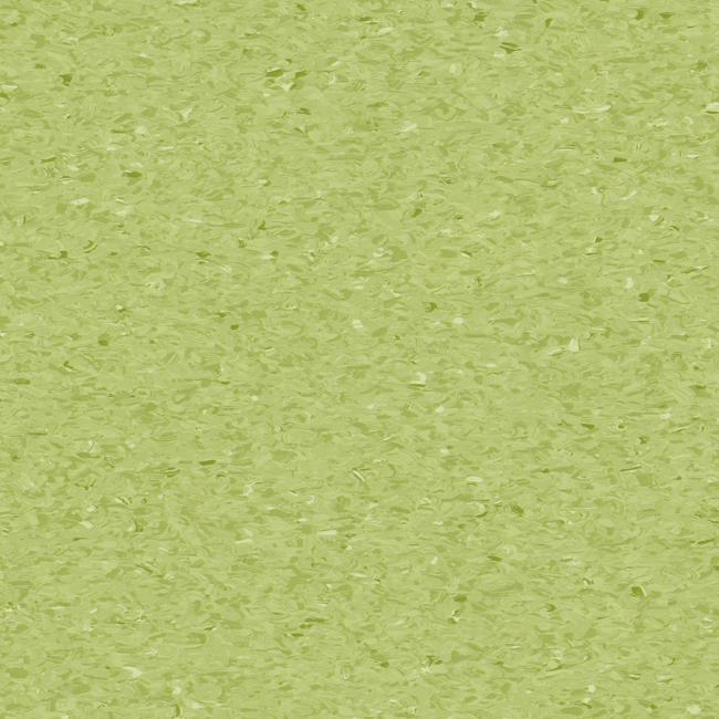 Soft-Kiwi-3040750