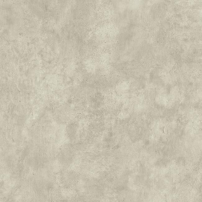 Stylish Concrete Light Grey 25106008
