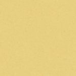 Yellow 21020732