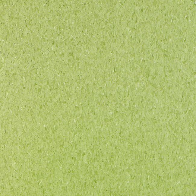 Yellow Green 3052705