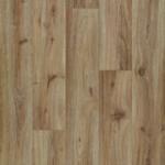 Hazelnut Oak 10832