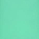Turquoise 40592