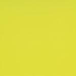 Mustard Circle 63584