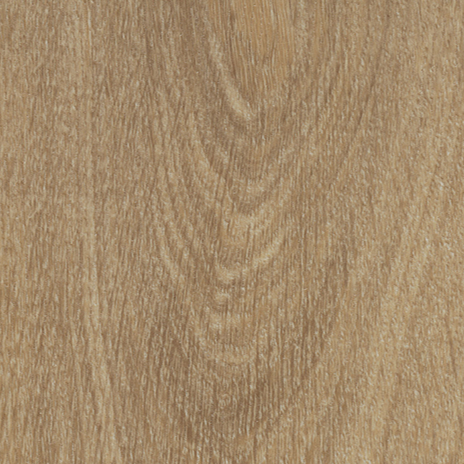 Natural Giant Oak 60284